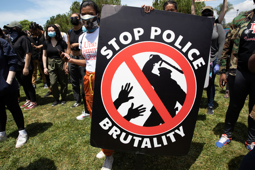 police brutality thurswell law michigan